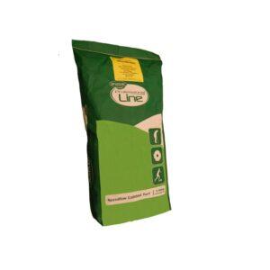 semilla anasac